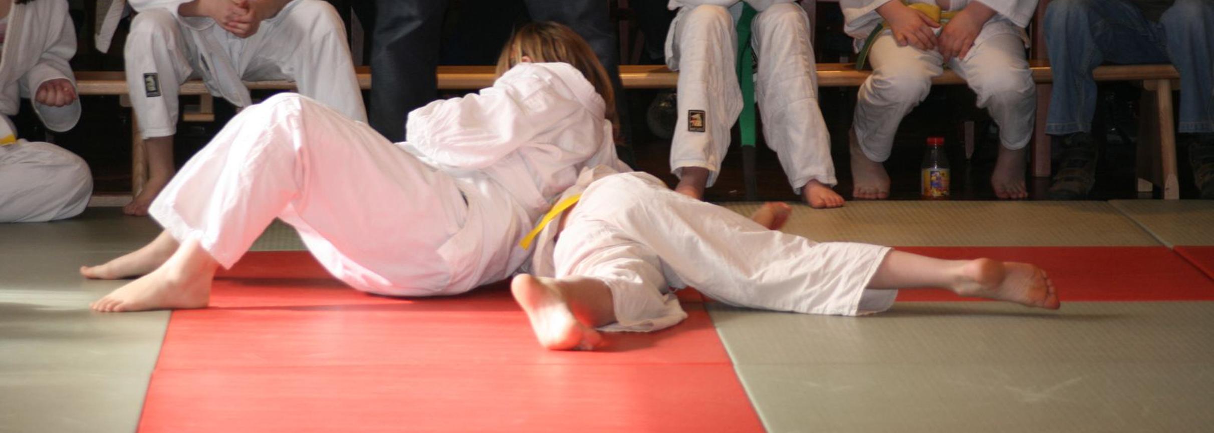 Wil je weten of Judo iets voor jou is?